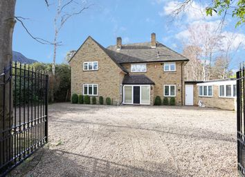 Thumbnail 4 bed property to rent in Brock Way, Wentworth, Virginia Water