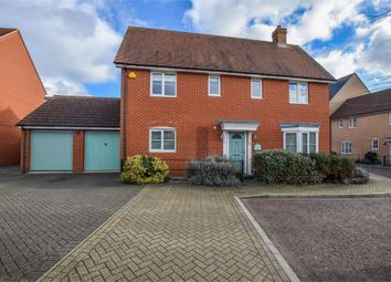 Thumbnail 4 bed detached house for sale in John Hammond Close, Colchester, Essex