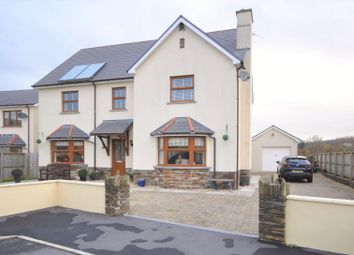 Thumbnail 6 bed detached house for sale in Meadow View, 7 Clos Y Wennol, Porthrhyd, Carmarther