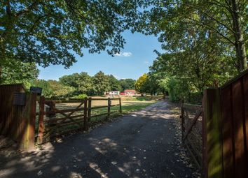 Thumbnail 3 bed detached bungalow for sale in Manor Road, Garboldisham, Diss