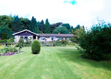 Thumbnail 4 bed bungalow for sale in Flasby, Skipton