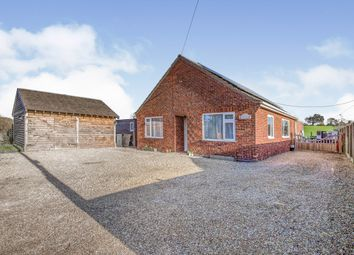 Thumbnail 3 bed bungalow for sale in Bunwell, Norwich