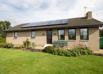 Thumbnail 3 bed detached bungalow for sale in Old School Gardens, Wark, Cornhill-On-Tweed