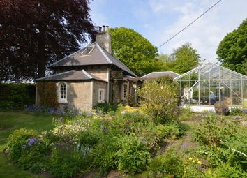 Thumbnail 1 bed cottage for sale in Coldingham, Eyemouth