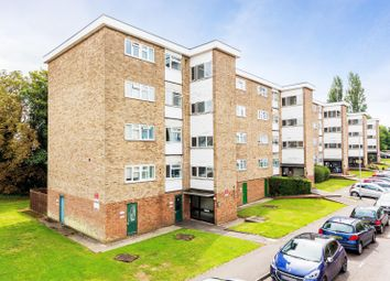 Thumbnail Flat to rent in Haig Court, Chelmsford