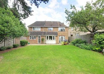 Thumbnail 5 bed detached house to rent in Richmond Road, New Barnet Barnet, Hertfordshire