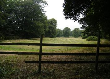 Thumbnail Land for sale in Penzance, Cornwall