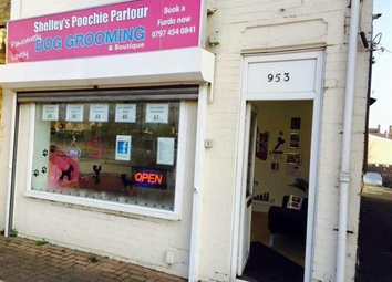 Thumbnail Commercial property for sale in Dog Grooming Parlour PE4, Peterborough