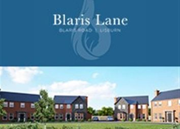Thumbnail 4 bedroom detached house for sale in Blaris Road, Lisburn