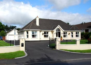 Thumbnail 5 bed detached house for sale in The Beeches, Magheraconluce Road, Hillsborough