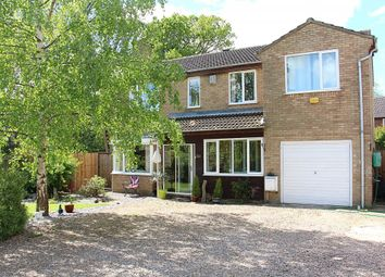 Thumbnail 5 bedroom detached house for sale in Thorney Road, Crowland, Peterborough