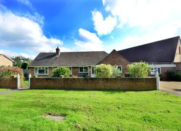 Thumbnail 4 bed detached house to rent in Woking Road, Guildford