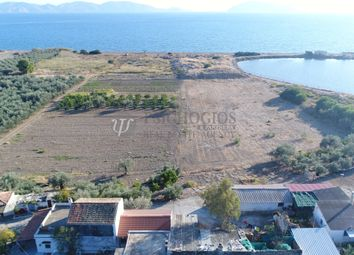 Thumbnail Land for sale in Ermioni, Ermionida, Argolis, Peloponnese, Greece