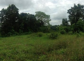 Thumbnail Land for sale in Walkerswood, Saint Ann, Jamaica