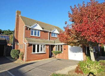 Thumbnail 5 bed detached house to rent in Millyford Close, Barton On Sea, New Milton