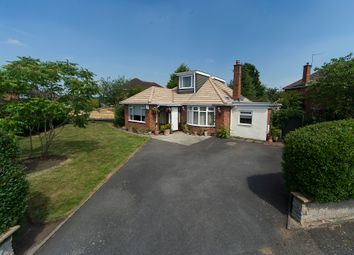 Thumbnail 4 bed detached bungalow for sale in Lapworth Way, Newport