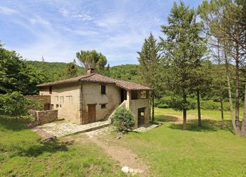Thumbnail 3 bed farmhouse for sale in Casa Ursula, Niccone Valley, Mercatale di Cortona, Tuscany