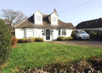 Thumbnail 3 bed bungalow for sale in Acton, Sudbury, Suffolk