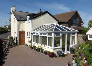 Thumbnail 3 bed cottage for sale in Moss Cottage, Thruxton, Hereford