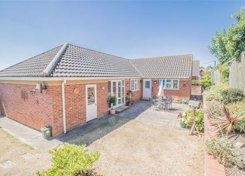 3 bed detached bungalow for sale in Mallows Field, Halstead CO9