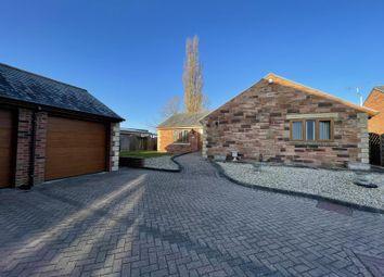Thumbnail Bungalow to rent in Beech Grove Gardens, Houghton, Carlisle