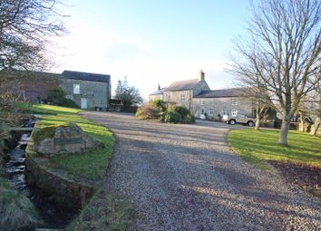Thumbnail 5 bed detached house for sale in Allendale, Hexham