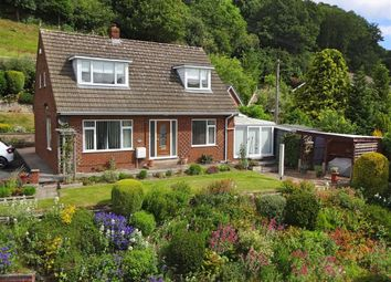 Thumbnail 3 bedroom detached house for sale in Kintara, Milford Road, Newtown, Powys