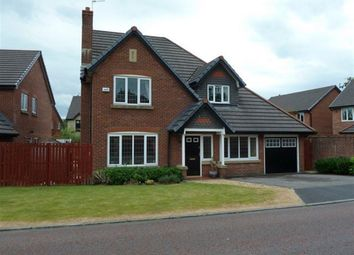 Thumbnail 4 bed detached house to rent in Fell View, Whalley