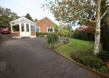 Thumbnail 4 bed bungalow for sale in Vine Acre, Hereford Road, Monmouth
