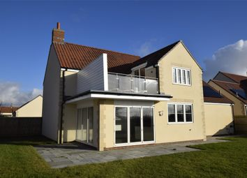 Thumbnail 4 bed detached house for sale in Silver Birch, 6 The Groves, West Pennard
