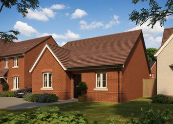 "Thumbnail 3 bedroom bungalow for sale in ""Buckland"" at The Walk, Withington, Hereford"