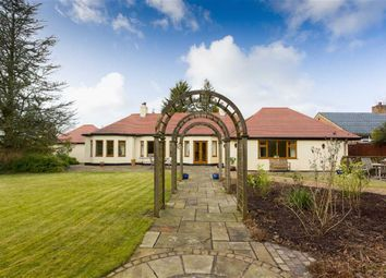 Thumbnail 5 bed detached bungalow for sale in Woodplumpton Lane, Broughton, Preston