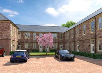 Thumbnail 3 bed terraced house for sale in The Hamptons, Cotford St. Luke, Taunton, Somerset