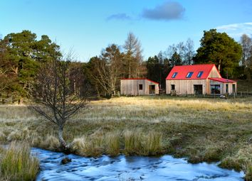 Thumbnail 4 bed detached house for sale in Mintlaw, Aberdeenshire