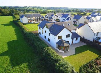 Thumbnail 6 bed detached house for sale in Bro'r Dderwen, Clynderwen, Pembrokeshire