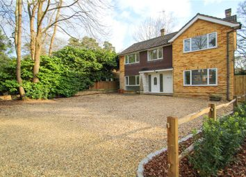 Thumbnail 5 bedroom detached house for sale in Prior Road, Camberley, Surrey