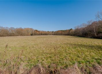 Thumbnail Land for sale in Ulting Road, Nounsley, Hatfield Peverel, Chelmsford, Essex