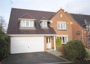 Thumbnail 4 bed detached house to rent in Wedgwood Avenue, Stone