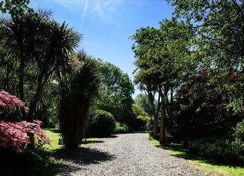 Thumbnail 4 bed detached house for sale in Lamorna, Penzance, Cornwall