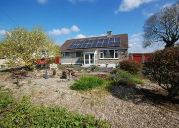 Thumbnail 3 bed detached bungalow for sale in Highbury Street, Coleford, Radstock