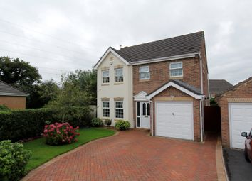 Thumbnail 4 bed detached house for sale in Pant Gwyn, Broadlands