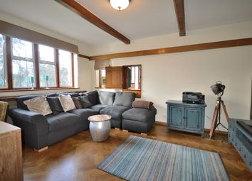 Thumbnail 4 bed detached house for sale in The Green, Southgate