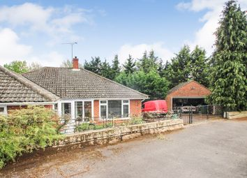 Thumbnail 3 bed detached bungalow for sale in Molember Road, East Molesey
