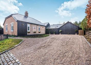 Thumbnail 4 bedroom bungalow for sale in Planting Side, Little Cawthorpe, Louth, Lincolnshire