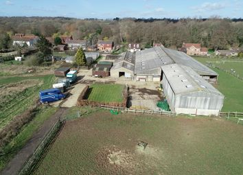 Thumbnail Land for sale in Mayles Lane, Wickham