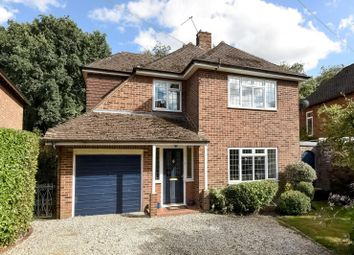 Thumbnail 5 bed detached house to rent in Lovelace Drive, Pyrford, Woking