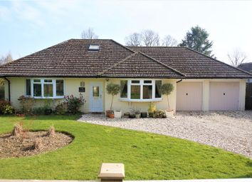 Thumbnail 4 bed detached bungalow for sale in Craven Road, Hungerford