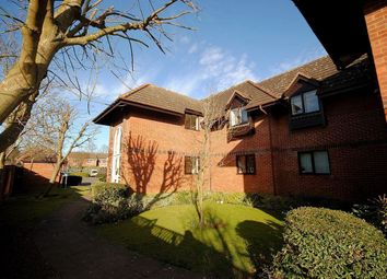 Thumbnail 1 bedroom detached house to rent in Ladywell Prospect, Sawbridgeworth