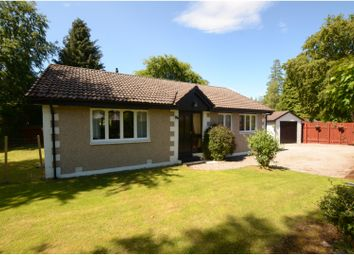Thumbnail 4 bed bungalow for sale in Drummond Crescent, Inverness