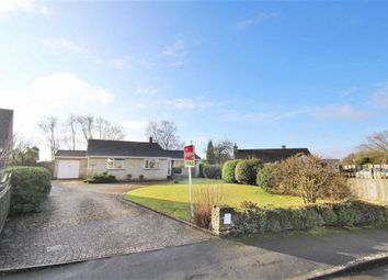 Thumbnail 2 bed detached bungalow for sale in Ringsbury Close, Purton, Wiltshire